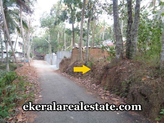 kerala-real-estate-trivandrum-balaramapuram-land-for-sale-balaramapuram-properties