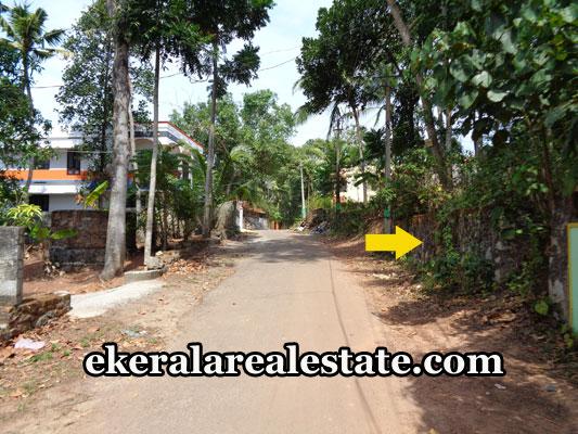 land-sale-in-trivandrum-kalliyoor-vellayani-land-plots-sale-trivandrum-kerala-real-estate