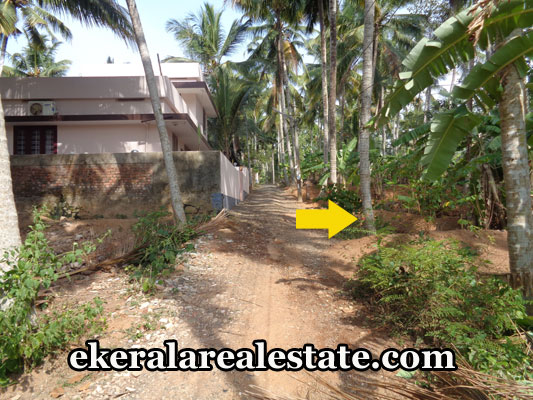land-sale-in-trivandrum-vazhuthoor-neyyattinkara-land-plots-sale-trivandrum-kerala-real-estate