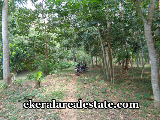 land-in-trivandrum-land-sale-at-marayamuttom-neyyattinkara-trivandrum-neyyattinkara-properties