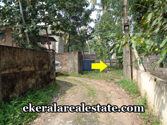 vattiyoorkavu-thiruvananthapuram-land-plots-for-sale-ptp-nagar-vattiyoorkavu-real-estate-properties