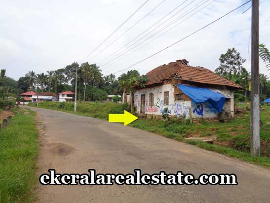 thiruvananthapuram-real-estate-land-plots-for-sale-in-aryanad-real-estate-properties