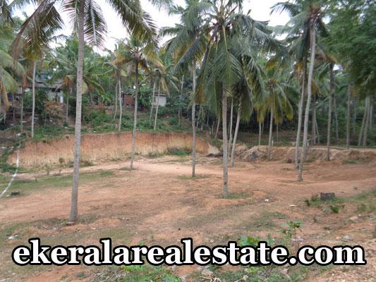 budget properties sale in vellayani trivandrum kerala land house plots sale in vellayani