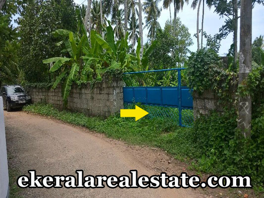 vellayani land plots sale by owner trivandrum real estate properties kerala land