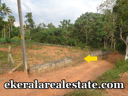 low-price-house-plots-sale-at-venjaramoodu-trivandrum-venjaramoodu-real-estate-properties1