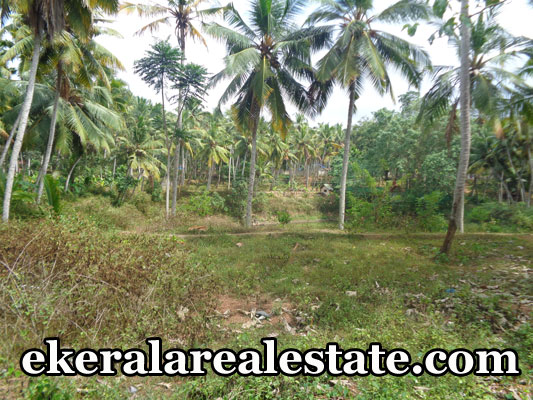 land plot price below 5 lakhs per cent sale at vizhinjam trivandrum kerala real estate properties