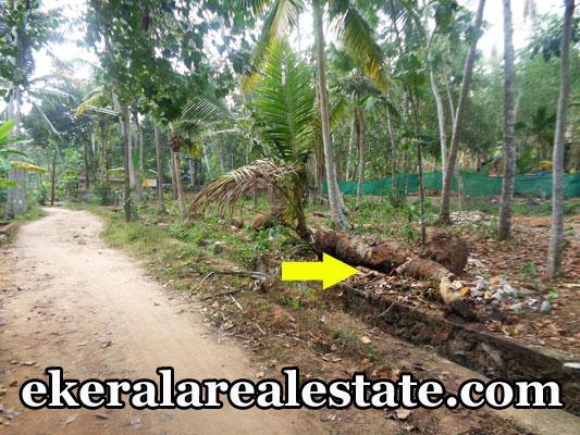 balaramapuram property sale land house plots sale at balaramapuram trivandrum kerala property sale land house plots sale