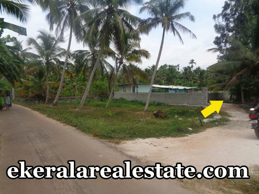 pangappara cheap rate house plots sale pangappara real estate properties trivandrum kerala land