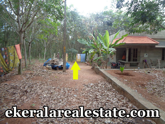 Neyyattinkara cheap price house plots sale Neyyattinkara real estate properties trivandrum kerala land