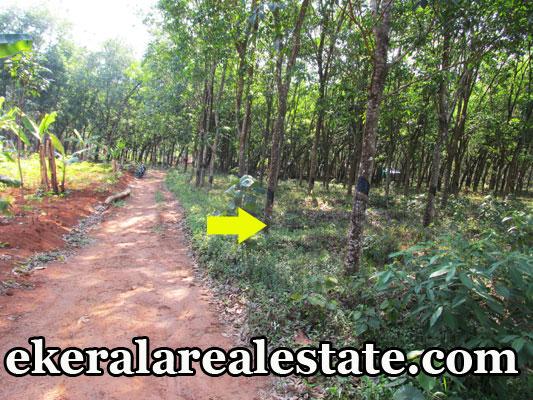 Venjaramoodu-trivandrum-land-rubber-plots-sale-trivandrum-kerala-real-estate-properties-Venjaramoodu