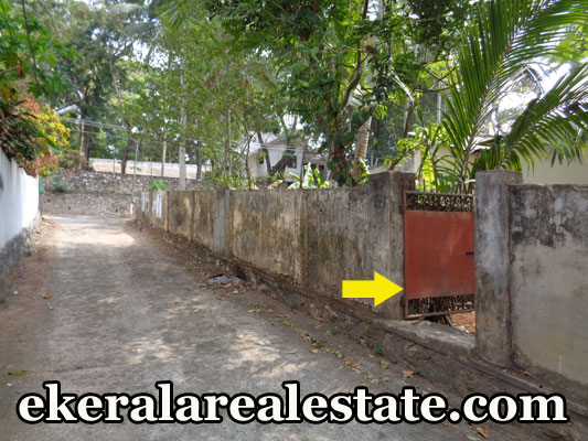 Land located Near YMR Junction Nanthancode Devaswom Board Land Area : 5 Cent Lorry Access Main Road – 50 meter Nanthancode Juncion – 500 meter Devaswom Board Junction – 750 meter Holy Angels' School – 1 km Nirmala Bhavan School – 1 km SUT Pattom – 3 km Behind Cliff House Price : 23 lakhs/ Cent (Nego) Contact no : +91 9446428692 When you call, plz mention that you found this ad on ekeralarealestate.com