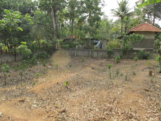 house plot for sale at Venjaramoodu Aliyad trivandrum real estate kerala trivandrum kerala Venjaramoodu Aliyad real estate properties