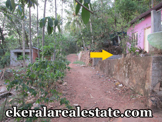 residential land and used house for sale Parayankavu Nedumangad real estate trivandrum properties  Nedumangad kerala