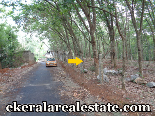 Tar road frontage land sale at Moongode Thachottukavu trivnadrum real estate Moongode Thachottukavu properties