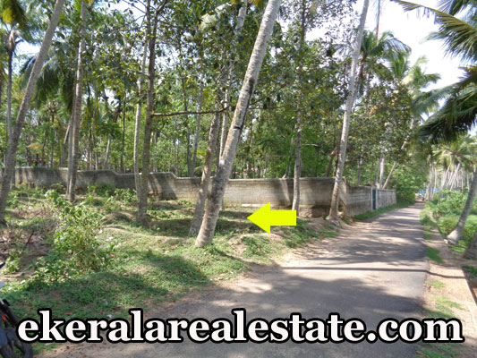 16 cent house land plot for sale at VedivechanKovil Balaramapuram trivandrum kerala properties VedivechanKovil