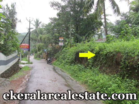 house plot for sale at Karipur Nedumangad Trivandrum Nedumangad real estate kerala trivandrum Karipur Nedumangad