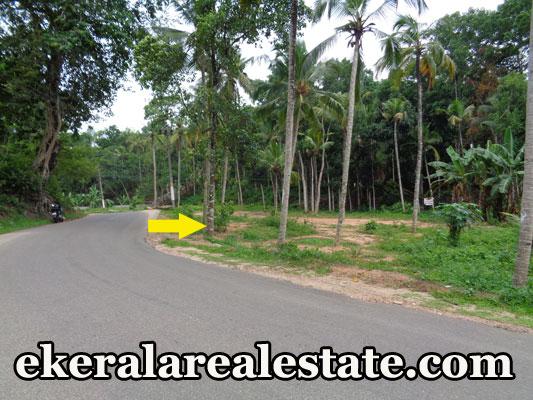 2 lakhs per cent 10 cent land for sale at Venjaramoodu Vembayam real estate properties land sale