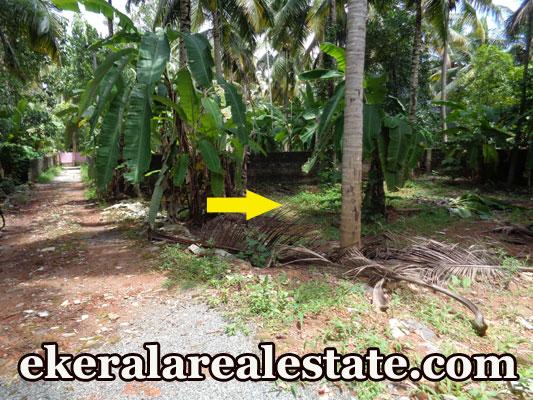 5 cent lorry access plot for sale at Kurishadi Junction Nalanchira Trivandrum real estate kerala trivnadrum nalanchira trivnadrum