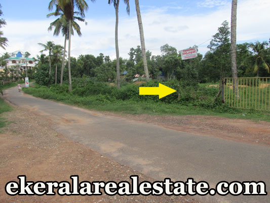44 cent land plot for sale at Mamam Attingal Trivandrum Kerala real estate kerala Mamam Attingal Trivandrum Kerala plot sale