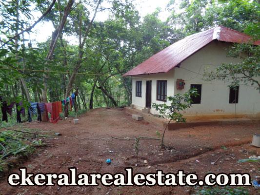 800 sq.ft rubber land for sale at Vandanoor Ooruttambalam real estate properties Vandanoor Ooruttambalam
