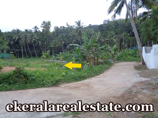 16 cent house plot for sale at Palode Nedumangad Trivandrum Kerala real estate trivandrum Palode Nedumangad Trivandrum Kerala
