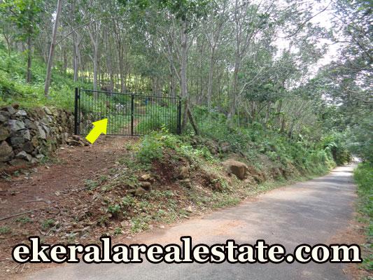 Rubber land for sale at Koottappu Near Amboori Vellarada Trivandrum Kerala real estate kerala trivandrum Koottappu Near Amboori Vellarada Trivandrum Kerala
