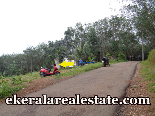 Karipur Nedumangad Trivandrum land plots for sale in kerala real estate Karipur Nedumangad land  sale