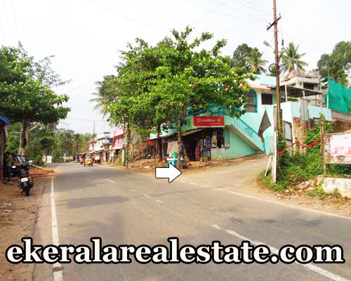 lorry Access house plot for sale at Pathamkallu Nedumangad Trivandrum real estate kerala