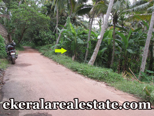 plot for sale at Trivandrum Mangattukadavu Thirumala real estate kerala trivandrum