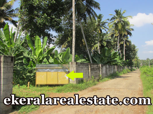 residential Land Sale at Pappanamcode Trivandrum Pappanamcode Real Estate Properties