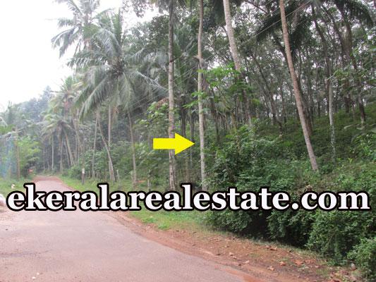 residential land for sale at Kokkottela Aryanad Trivandrum real estate kerala trivandrum