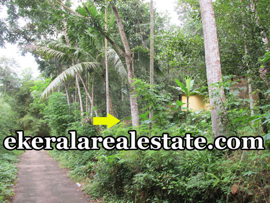 1.25 lakhs per cent land plot for sale at Mylam Aruvikkara Trivandrum Aruvikkara real estate kerala