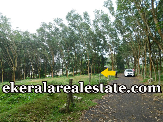 trivandrum real estate house plot for sale at Pothencode Sreekariyam Trivandrum kerala house sale