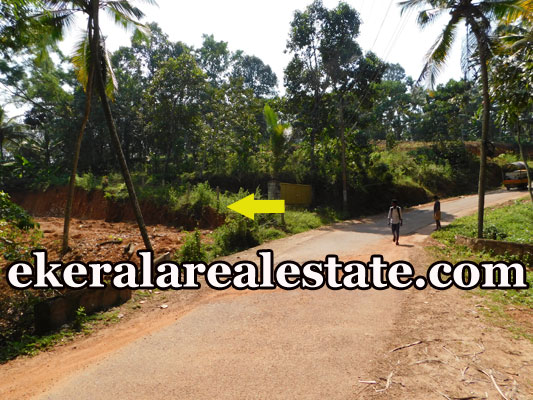2.5 lakhs per Cent plot for sale at Uriyacode Junction Vellanad Trivandrum Vellanad real estate kerala
