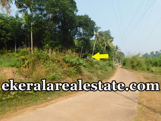 lorry plots for sale at Mundela Aruvikkara Nedumangad Trivandrum Aruvikkara real estate properties land sale