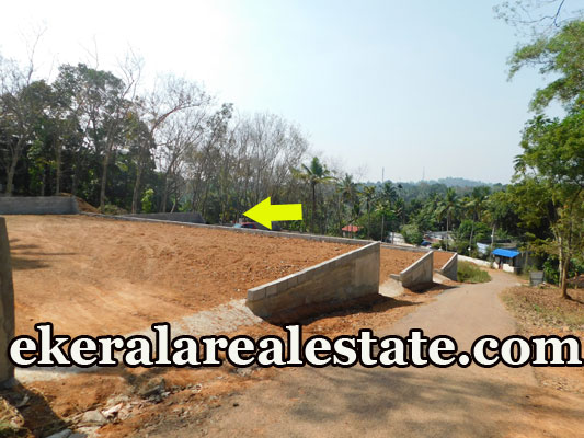 lorry plot for sale at Mannanthala Trivandrum Mannanthala real estate kerala properties sale