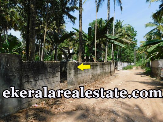 lorry plot for sale at Kurishadi Junction Nalanchira Trivandrum Nalanchira real estate properties sale