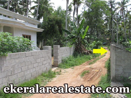 land for sale at Kaniyapuram Kazhakuttom Trivandrum Kazhakuttom real estate properties sale