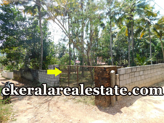 land for sale at Pullanivila Kariavattom Trivandrum Kariavattom real estate properties sale