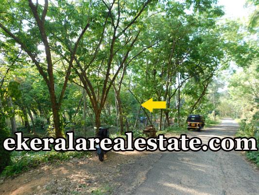 low price land for sale at Kariyamcode Kattakada Trivandrum Kattakada real estate properties sale