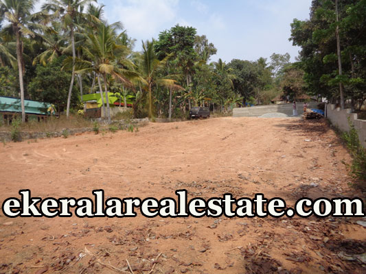 cheap rate land for sale at Vellayani Ookode Trivandrum Vellayani real estate properties sale