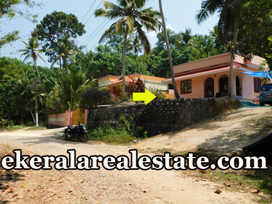 1000 sq.ft 2 bhk house for sale at Karipur Nedumangad Trivandrum Nedumangad real estate properties sale