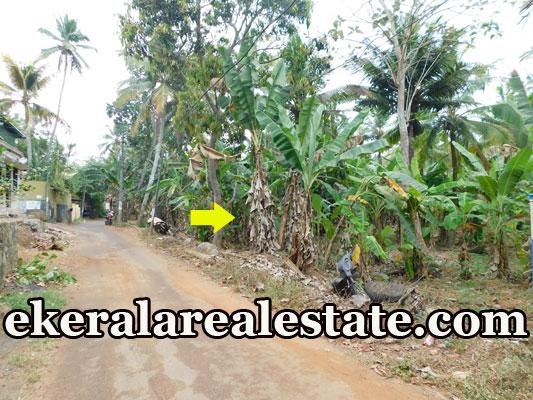 22 cent house plot for sale at Surya Nagar Mannanthala Trivandrum Mannanthala real estate properties sale