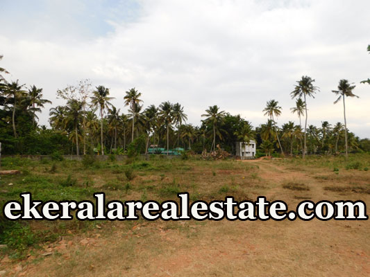8 Acres land for sale at Mundakkal Polayathodu Kollam Kerala Mundakkal real estate properties sale