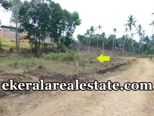 2 Acres land plot for sale at Powdikonam Sreekariyam Trivandrum real estate properties sale