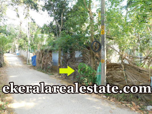 Kaniyapuram house plot for sale at Kaniyapuram trivandrum real estate properties sale