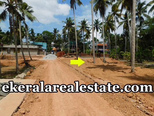 5 lakhs per Cent house for sale at Thirumala Trivandrum real estate properties sale