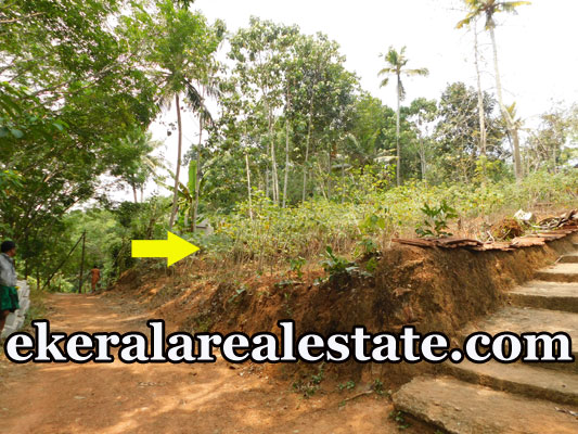 lorry plot for sale at Near Vengode Pothencode Trivandrum real estate properties sale