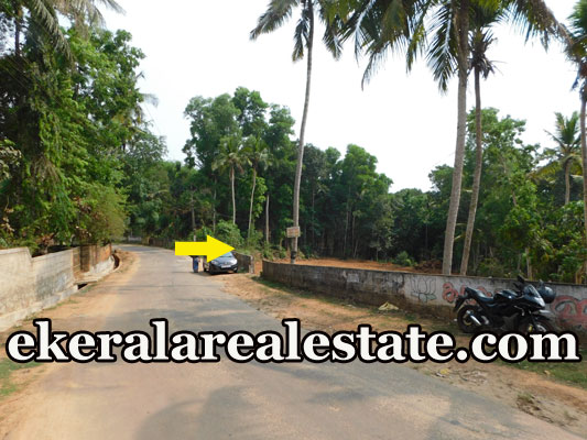 land plot for sale at Neyyattinkara Trivandrum Neyyattinkara real estate properties sale