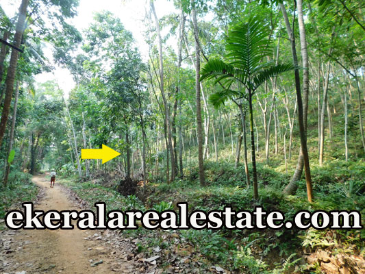 rubber land for sale at Manchavilakom Neyyattinkara Trivandrum Neyyattinkara real estate properties sale